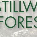 Stillwater Forestry LLC